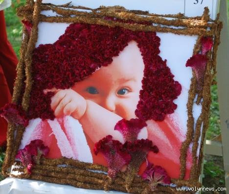 Ось кілька фото із свята квітів луцьк